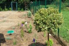 Realizace zahrady - Louňovice